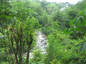 meander sungai