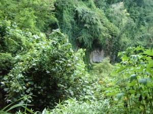 Perlindungan tebing penyangga taman GMKA