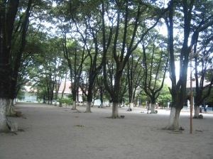 Pohon kecik dan pasir gemersik