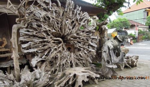 salin rupa akar