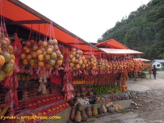 Markisa ikon Kabupaten Solok