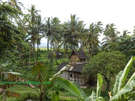 pekarangan di belakang situs Kubur Rajo