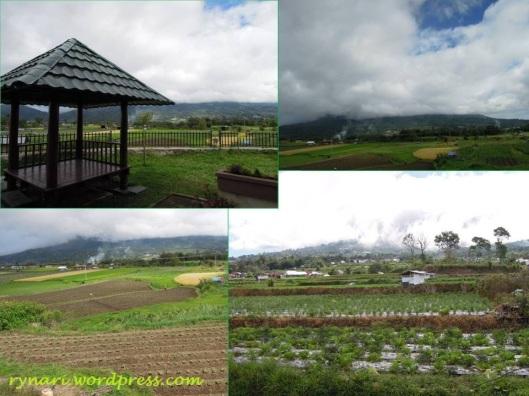 Kaki gunung Singgalang