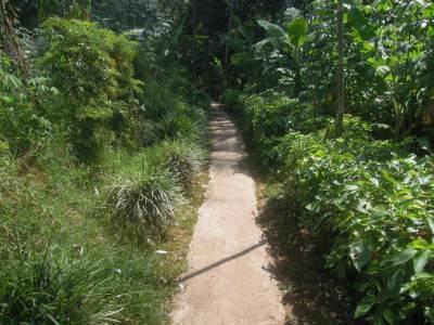 Candi Dukuh (jalan masuk)