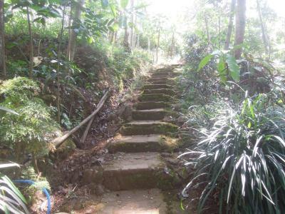 Candi Dukuh (jalan mendaki)