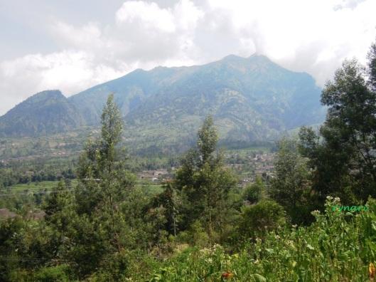 3. Merapi dari resto Selo Pass