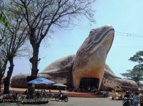 Kura-kura Ocean Park Jepara...masuk yook