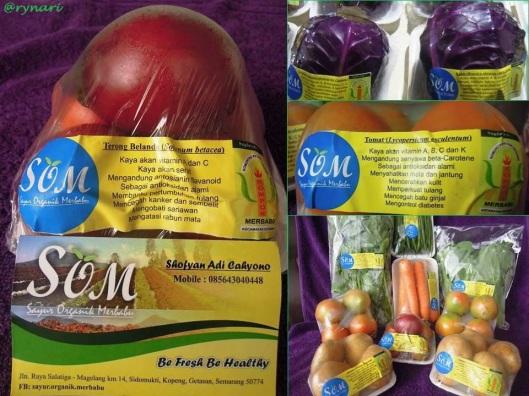 Produk Sayur Organik Merbabu