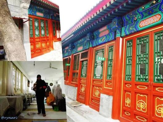 Nan Dou Ya 3