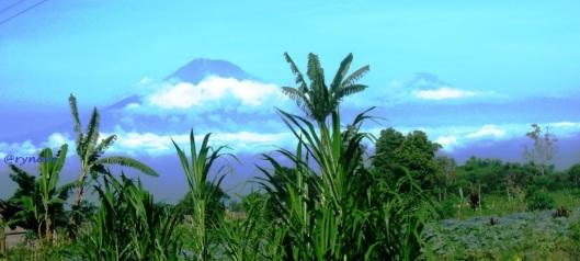 1. Sumbing (ki) - Sindoro (ka) dari sekitar Kaponan Magelang