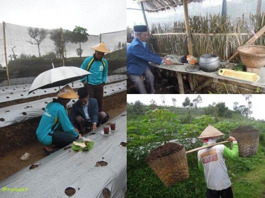 Bertani membangun relasi