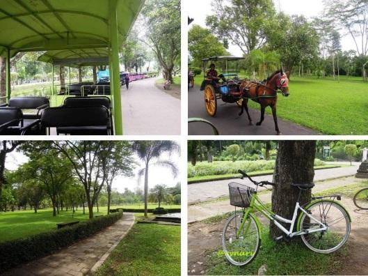Aneka transportasi menikmati Borobudur