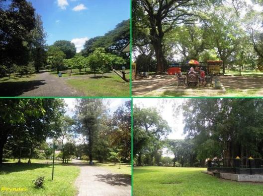 Partinah Bosch-Hutan kota-ruang terbuka hijau