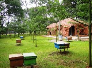 Tala (rumah tawon) berdampingan