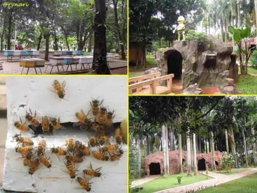 Taman Wisata Lebah 1
