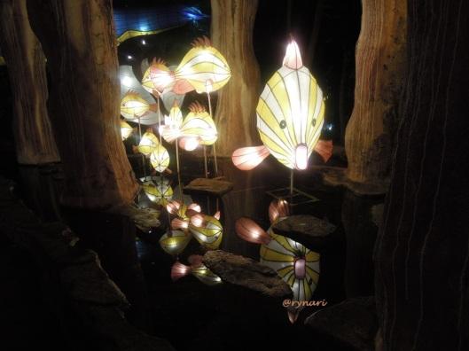 2. Lampion dunia ikan