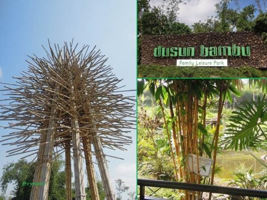 Dusun Bambu 1-konservasi bambu