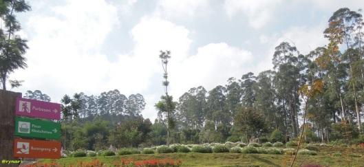 Dusun Bambu 3 Bukit berbunga