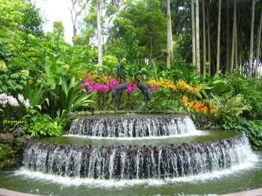 Orchid garden 2