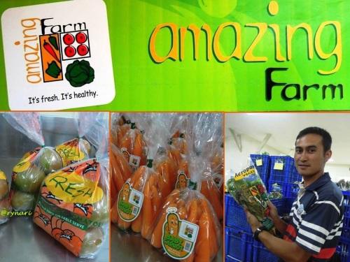 Amazing Farm 1 -menjual kesegaran