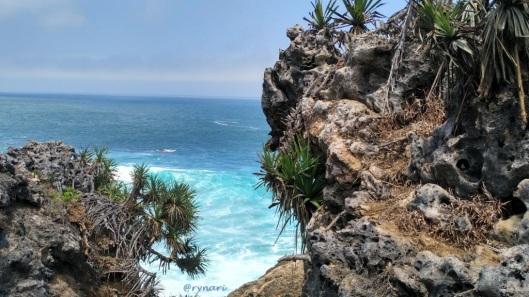 3. Nglambor-mengintip dari sela tebing karang