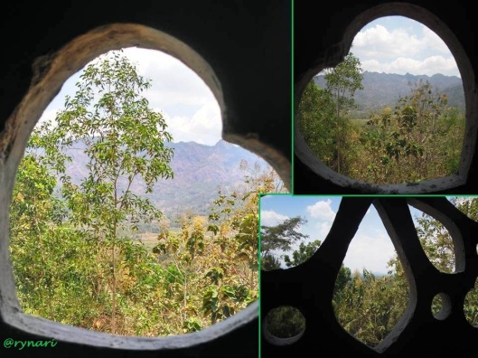 Mengintip hutan jati dari Griya Merpati