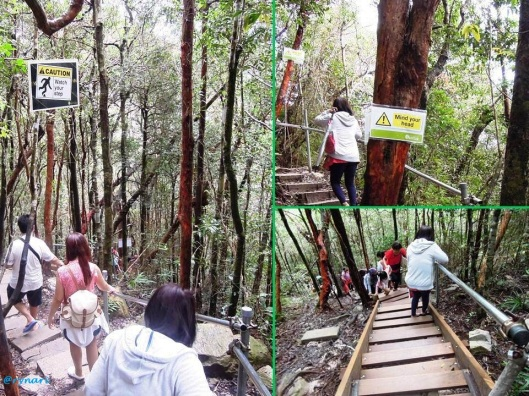 Watch your step..mind your head .... tracking to skybridge (thx to Monic's fam)