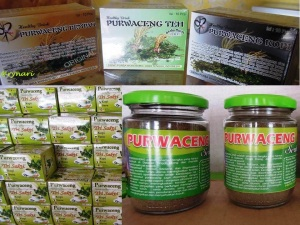 3. Purwaceng-produk
