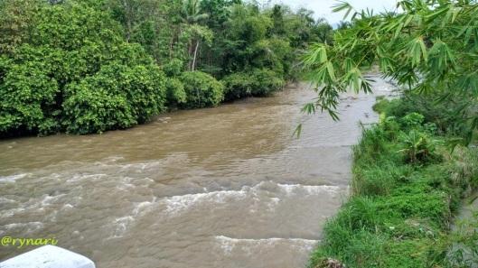 Kali Tuntang di desa Tempuran kec Bringin kab Semarang