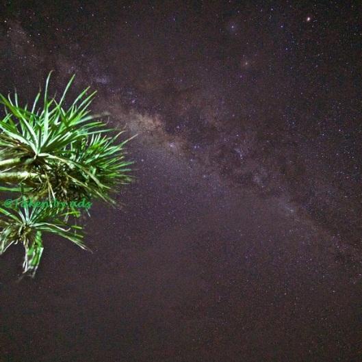 gugus-bintang-di-pantai-pok-tunggal-by-ads_2