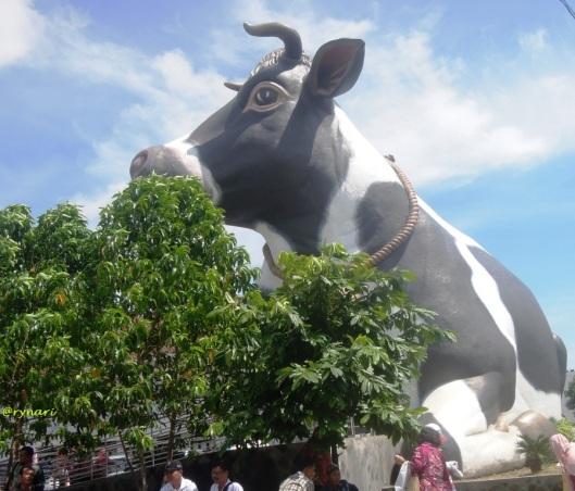 harapan-dalam-ikon-sapi