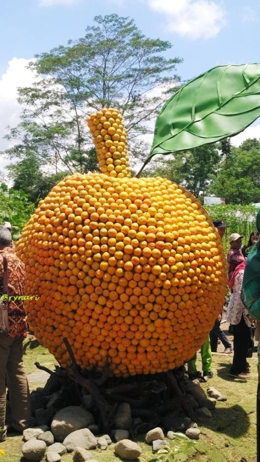 segarnya-jeruk-raksasa-di-hps-2016