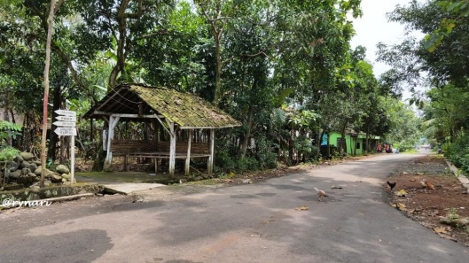 jalan-desa-bantal
