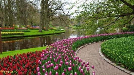 Tulip dan taman melengkung tepian danau